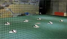 Drone Show